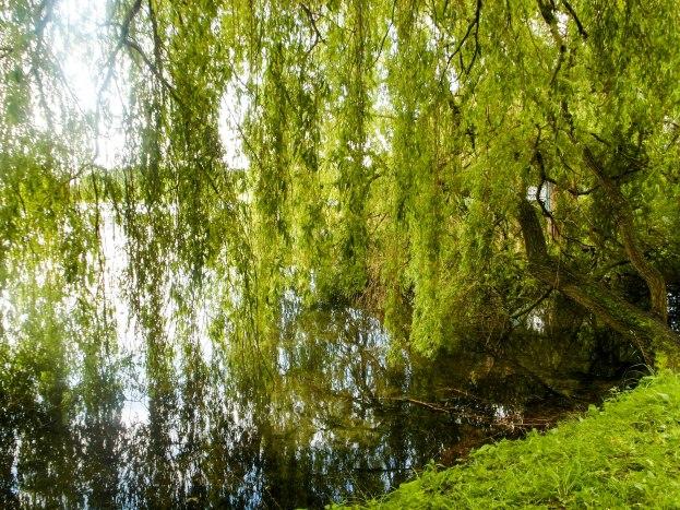 Ostsee (16 von 233)